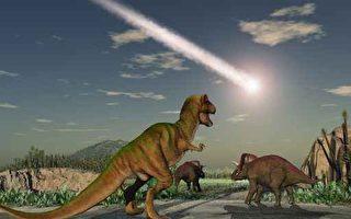 專家警告:地球正經歷新一輪物種大滅絕