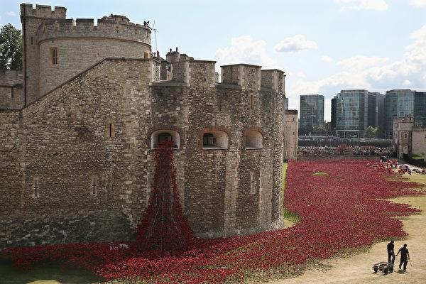 2014年8月3日,在倫敦塔,88萬8246朵陶瓷做的罌粟花被擺放在乾涸的護城河道上,以紀念每一名陣亡的英國戰士。(Dan Kitwood/Getty Images)