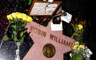 好萊塢星光大道鮮花悼羅賓 伙伴談其幕後