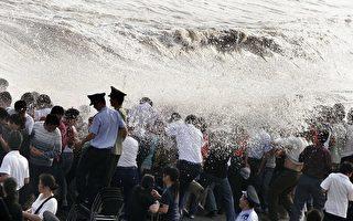 杭州钱塘江大潮 多观潮者被掀翻头破骨折