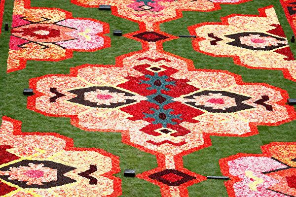 比利時兩年舉辦一次的花毯節,8月14日在首都布魯塞爾老城的大廣場舉行。(Andreas Rentz/Getty Images)