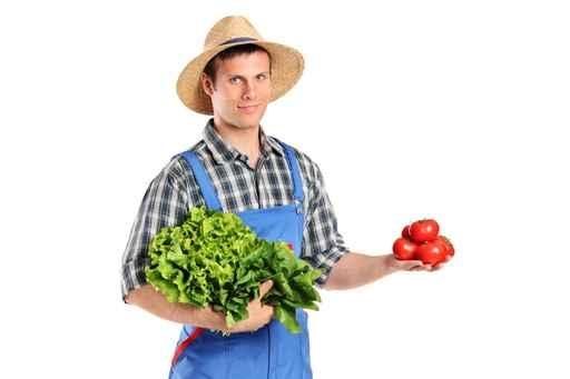 菠菜含有的微量元素鎂會將肌肉中的碳水化合物轉化為可利用的能量,從而增加肌肉的力量。(fotolia)