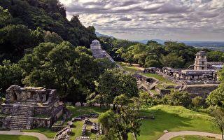 迄今最大最古老马雅遗址 疑在墨西哥丛林现踪