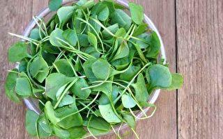 """绿叶蔬菜可防癌 堪称""""救命菜""""的有5种"""