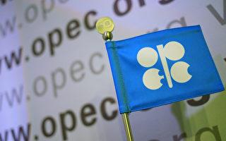 歐佩克預期明年全球原油需求降 熊市難止