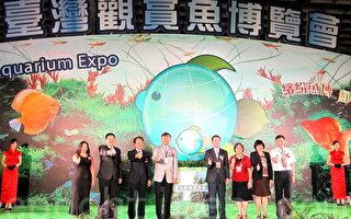 組圖:臺灣賞魚博覽會 珍奇魚種多樣