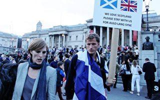 9月15日,倫敦特拉法加廣場,參加集會的人手舉「我們愛蘇格蘭,請和我們在一起」牌 子。(李景行/大紀元)