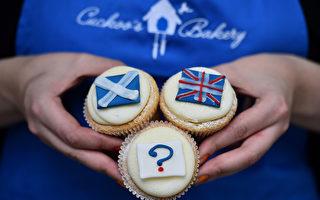 9月16日的幾份民意調查顯示,希望留在英國的蘇格蘭民眾略多於意欲獨立的部分。因還有35萬選民猶豫不決,9月18日的結果充滿懸念。(BEN STANSALL/AFP)