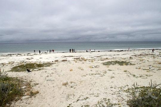 白沙灘海岸(地圖上的景點5)(王文藝/大紀元)