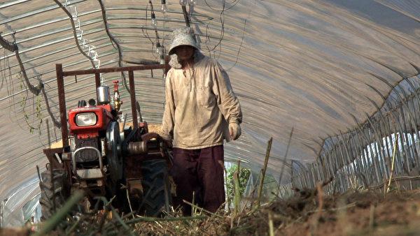 第九屆「台灣國際紀錄片影展」將播放描繪南韓有機小農力抗觀光產業開發的《八堂的綠色之戰》。(TIDF提供)