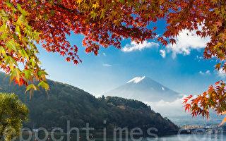 組圖:又到日本紅葉繽紛的季節