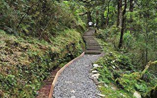 宜兰大同.太平山-望洋山步道