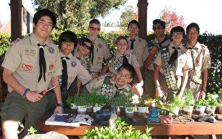 兩華裔少年 有望晉級鷹級童軍