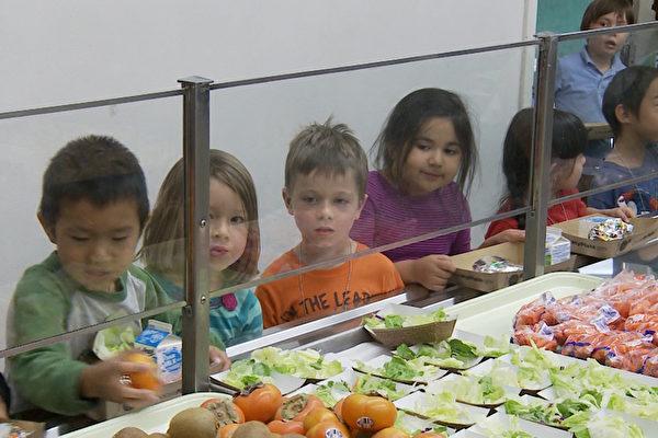 加州周四计划 学生享当地新鲜蔬果
