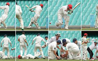 澳洲板球员休斯被球击中头部 不幸身亡