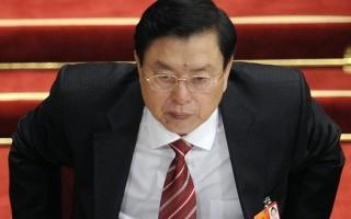 周永康被逮捕或影響香港局勢 傳張德江失後台