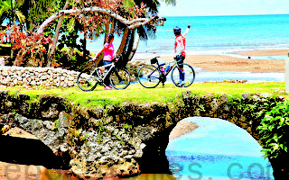 2015年出國旅遊 平日時段省最多