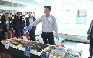 新科技「活魚箱」 跨洋海運生鮮成真