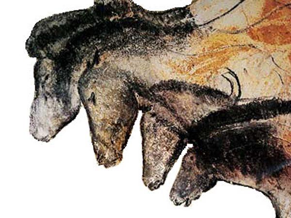法国考古学家在肖维岩洞的壁画中发现了描绘一只有很多腿、头以及尾巴的动物画面。他们通过研究认为,这是表现史前人类移动场景的一种方式。(AFP PHOTO/JEFF PACHOUD)
