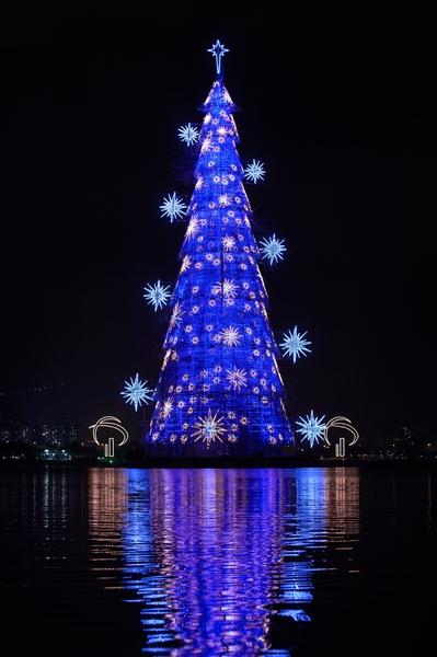 2014年12月2日,巴西里約熱內盧,85米高的聖誕樹照亮羅德里戈弗雷塔斯潟湖。(YASUYOSHI CHIBA/AFP/Getty Images)