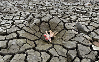全球土壤逾三成劣化 人類生存臨危