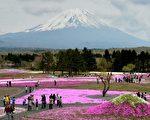 Travelzoo旅遊族日前一項新調查顯示,日本和美國將成為2015年更受中國人歡迎的旅遊目的地。圖為日本富士山一景。(KAZUHIRO NOGI/AFP/Getty Images)