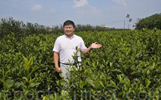 教育政策讓人才流失 台灣農業陷困境