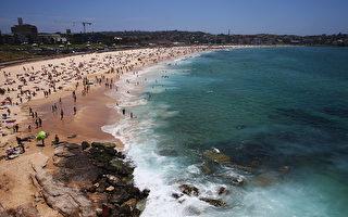 悉尼气温骤升 湿度居高不下