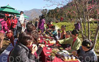 信義櫻花季登場 花與茶的饗宴