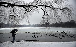 组图:冬季风暴将袭美东 各州严阵以待