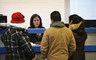 加州新法实施7周 11万非法移民获驾照