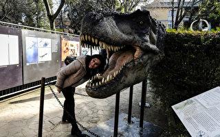 组图:恐龙模型巨大威猛 如侏罗纪再现