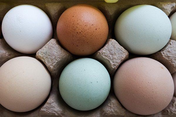 在美国买鸡蛋 7种标签你懂吗