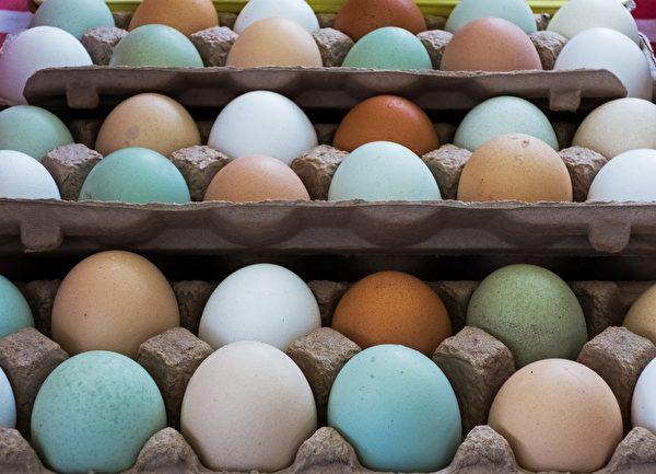 美国农夫市场上的田园鸡蛋,不同的鸡产下不同颜色的蛋。(PAUL J. RICHARDS/AFP/Getty Images)