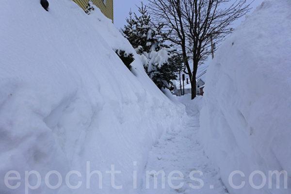 2015年连续三场暴风雪后,波士顿变成冰雪世界。(宁静/大纪元)