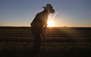 美新移民2倍於新職位 就業率超本土人口