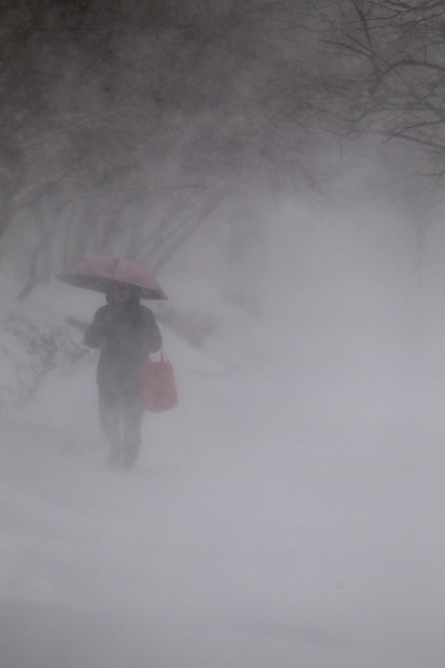 2月15日,波士顿,大雪中在市中心的行人。(Scott Eisen/Getty Images)
