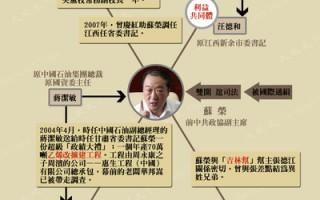 图表新闻:苏荣与四正国级高官关系图