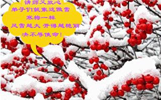 大陸各地區法輪功學員恭祝李洪志大師過年好