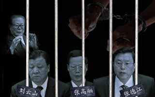 大陸官媒2月24日再次刊文稱,反反腐言論與3只「大老虎」落馬時間高度吻合,這「不是簡單的巧合」。此前,江澤民曾向外放風要習近平當局「收控」反腐運動等。(大紀元合成圖片)