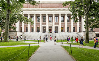 全球声誉最好大学排名  哈佛蝉联冠军