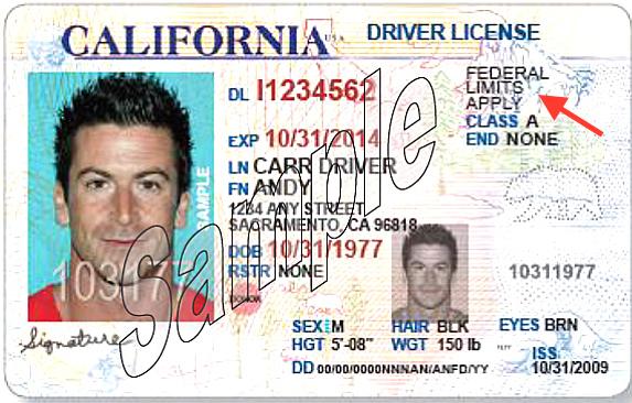 加州11萬非法移民獲得特別駕照