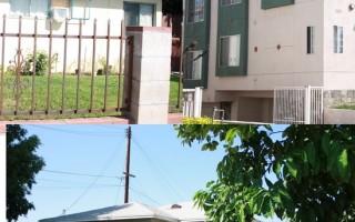 圣安娜凶杀案激增 地下赌场涉有组织犯罪