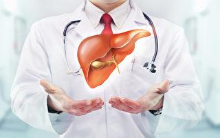 肝炎是華人的高發病 新年需關注肝健康