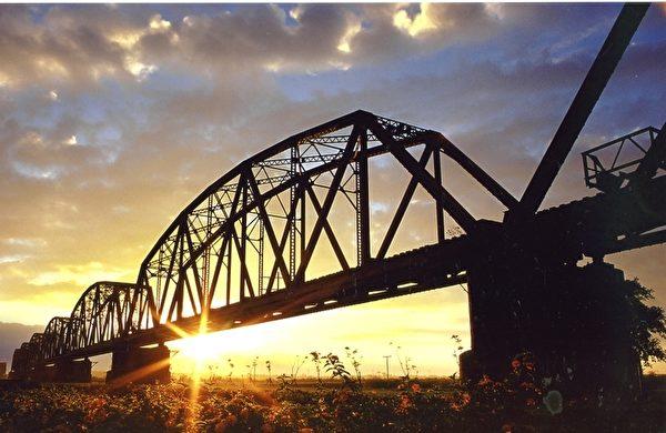 """台湾大树旧铁桥变身""""天空步道""""。(台湾高雄市政府都发局提供)"""