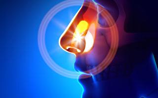 觀察鼻色 預知健康