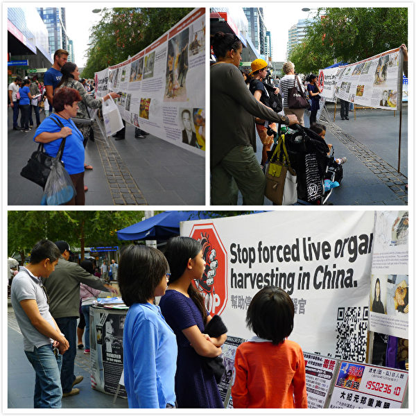 悉尼北岸车士活当地市民主动了解真相、积极传播真相、坚决制止中共活摘器官。(明慧网)