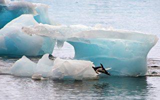 年融化56亿吨冰 南极半岛南方冰层快速消融