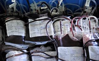 """细菌酵素使任何血型变""""万用"""" 可解血荒"""