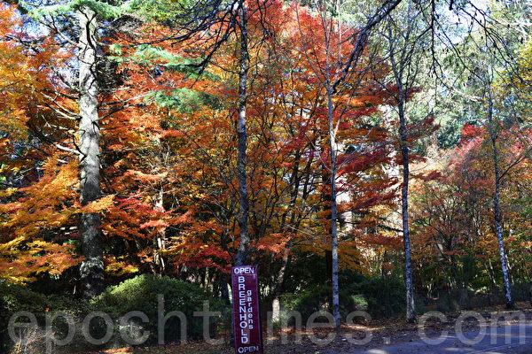 山村如詩如畫的秋色。(華苜/大紀元)